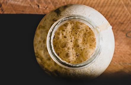 酵母の種類と特徴
